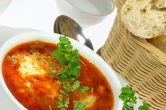 Bowl of borscht. Royalty Free Stock Image