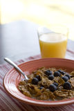 Bowl of bran cereal. Close up of bowl of cereal on table royalty free stock photography