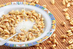 Bowl of breakfast cereal Royalty Free Stock Photos