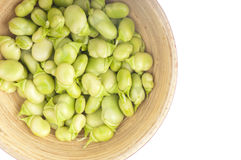Bowl of broad beans. Bowl of young, fresh and tender broad beans on white Royalty Free Stock Photo