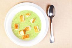 The bowl of broccoli soup Royalty Free Stock Image