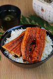 Bowl of broiled eel royalty free stock photography