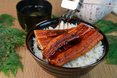 Bowl of broiled eel. On cooked rice in Japan stock photo
