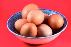 Bowl of brown eggs Royalty Free Stock Images