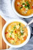 Buffalo chicken and potato soup royalty free stock photos