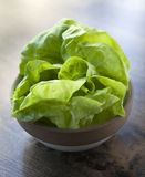 Bowl of Butter Lettuce. On a wood table royalty free stock images