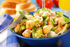 Bowl of caesar salad. With lettuce,grilled chicken and croutons royalty free stock photos