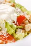 Bowl of Caesar Salad Royalty Free Stock Photography