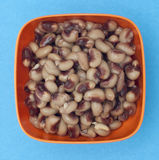 Bowl of Canned Black Eyed Peas Royalty Free Stock Photography