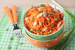 Bowl of carrot salad with beans and green onions Stock Images