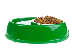 Bowl with cat food Stock Image
