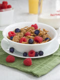 Bowl of cereal. A bowl of healthy wheat bran cereal Royalty Free Stock Photo