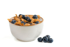 Bowl of cereal Royalty Free Stock Photo