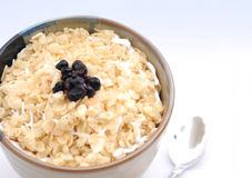 A bowl of cereal with blueberries Stock Image