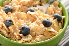 Bowl of Cereal with Blueberries Royalty Free Stock Photography