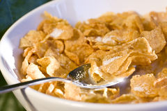 Bowl of cereal in the morning light Royalty Free Stock Photo