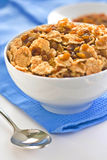 Bowl of cereal with raisins Stock Image