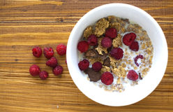 Bowl with cereals Royalty Free Stock Photos
