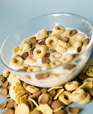 Bowl with cereals Stock Images