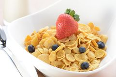 Bowl of cereals with strawberry and blueberries Stock Photos