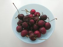 A bowl of cherries Stock Photography