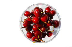 Bowl of cherries Royalty Free Stock Images