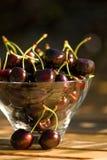Bowl of cherries outdoors Stock Photo