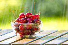 Bowl of Cherries in Rain Stock Photo