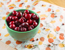Bowl of cherries with stems, pits Royalty Free Stock Photos