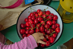 A bowl of cherries Royalty Free Stock Photography