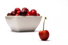 Bowl of Cherries. On white background royalty free stock images