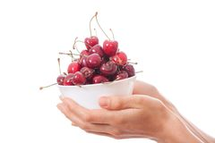 Bowl of cherries in women's hands Royalty Free Stock Photo