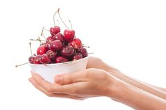 Bowl of cherries in women's hands Stock Photography