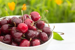 Bowl of cherry berries on grass background Stock Image