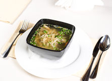 Bowl of chicken noodle soup with fresh herbs Royalty Free Stock Photo