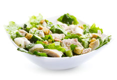 Bowl of chicken salad Royalty Free Stock Photo