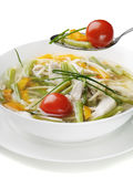 Bowl of Chicken vegetable Soup Royalty Free Stock Photography