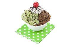 Bowl of chocolate and mint ice cream Stock Image
