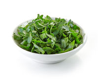 Bowl of chopped parsley Stock Images