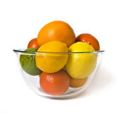 Bowl of citrus Stock Image