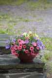 Bowl of colorful flowers Stock Images