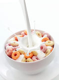 Bowl of colorful fruit loops breakfast cereal. Pouring fresh creamy milk into a bowl of colorful fruit loops breakfast cereal in a white ceramic bowl with a Stock Images