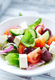 Bowl of colorful summer salad with feta and olives Royalty Free Stock Images