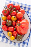 Bowl with colorful tomatoes. Enamel bowl with colorful tomatoes Stock Images