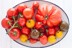 Bowl with colorful tomatoes. Enamel bowl with colorful tomatoes Stock Photography