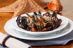 Bowl with cooked mussels Stock Photography
