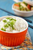 Bowl of cooked rice with green onion Royalty Free Stock Photos