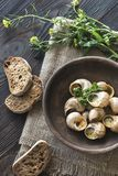 Bowl of cooked snails Royalty Free Stock Photos