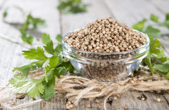 Bowl with Coriander Seeds royalty free stock photos