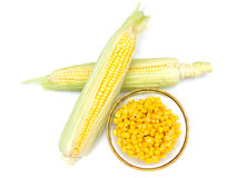Bowl of corn and cobs from Stock Photography
